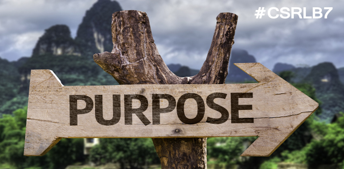 6 Ways to Take Your Business from Profit to Purpose
