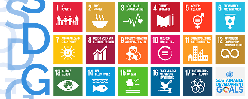 Yes, it is our business: how corporations can help on Sustainable Development Goals